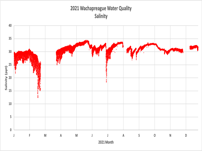 VIMS_Wach_Dock-Salinity.png